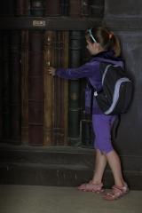 Biblioteka w Vincennes