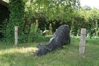 Pomnik niepokornej krowy
