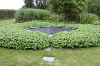 Trampolina w ogródku