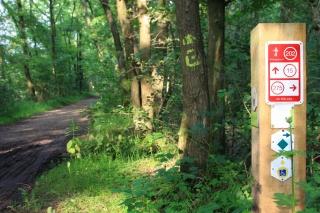 Węzły - oznakowanie trasy pieszej