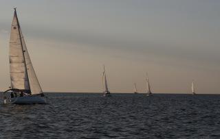 Płyniemy do Rimini