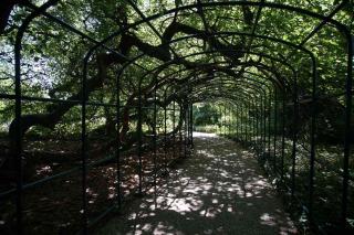 Herrengarten Hannover