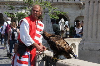 Sokolnik i jego ptaszek